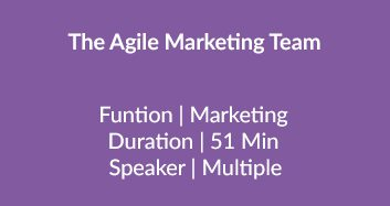 The Agile Marketing Team